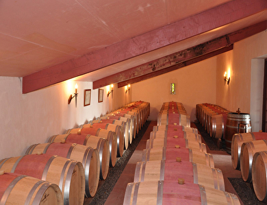 SOLD IN 2015. GIRONDE, wine property of 16ha