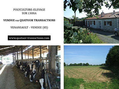SOLD IN 2018. VENDEE. Dairy farm on 130 hectares