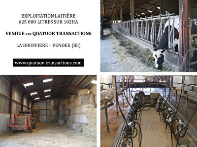 SOLD IN 2018. VENDEE. Dairy farm 625,000 litres on 102 hectares