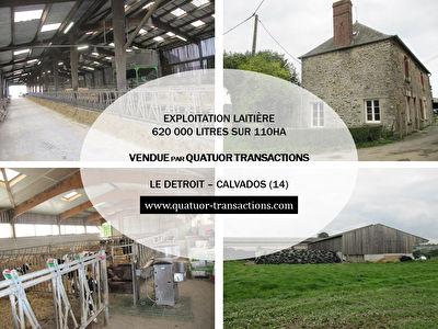SOLD IN 2018. CALVADOS. Dairy farm 110 hectares 620,000 litres