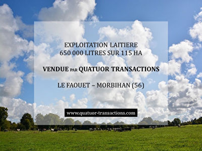 SOLD IN 2018. MORBIHAN. Dairy farm on 115 hectares