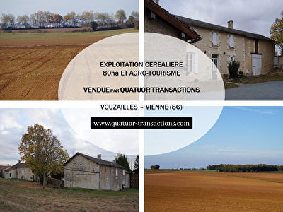 SOLD IN 2018. VIENNE. Crops on 80 hectares and agro-tourism