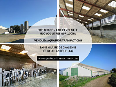 LOIRE ATLANTIQUE. Mixed dairy and poultry farm on 100 hectares