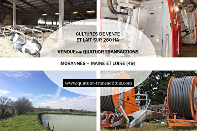 SOLD IN 2018. MAINE ET LOIRE. Crops and milk on 280 hectares