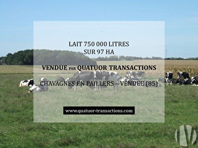 SOLD IN 2019. VENDEE. Dairy farm 750,000 litres with quality facilities